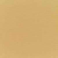 Canvas-Brass