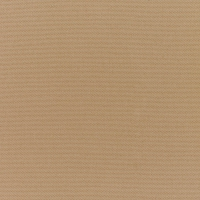 Canvas-Cocoa