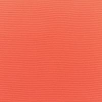 Canvas-Melon