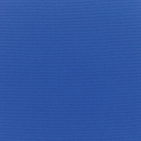 Canvas-True-Blue